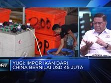 RI Impor Ikan dari China, Kadin: Penggunaanya Untuk Industri