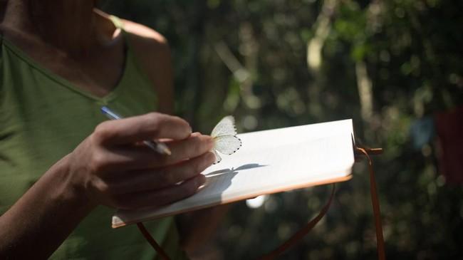 Seorang peneliti menaruh kupu-kupu di atas buku untuk kebutuhan penelitian. (Photo by FLORENT VERGNES / AFP)