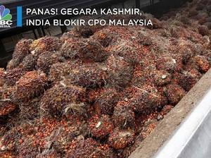 Panas! Gegara Kashmir, India Boikot CPO Malaysia