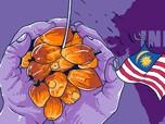 India Boikot Sawit Malaysia, RI Dapat Berkahnya?
