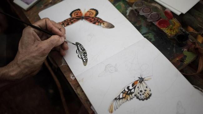 Gambar kupu-kupu yang dihasilkan adalah jenis Papillo Antimachus di Mogoumba, Afrika. Species Papillo Antimachus memiliki lebar sayap 25 sentimeter ditemukan pertama kali pada 1782. (Photo by FLORENT VERGNES / AFP)