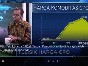 Telisik Harga CPO di Tengah Aksi India Boikot Sawit Malaysia