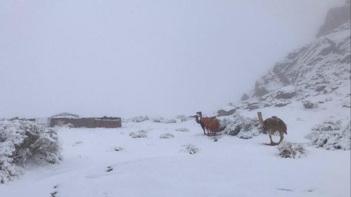 Kala Salju Turun di Saudi Arabia