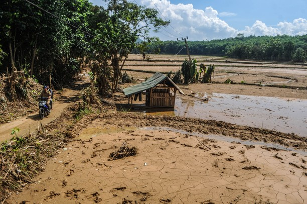Penampakan Sawah Rusak Usai Diterjang Banjir Bandang di Lebak