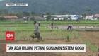 VIDEO: Tak Ada Hujan, Petani Gunakan Sistem Gogo