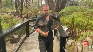 VIDEO: Karhutla Reda, Bonbin Australia Diterjang Banjir