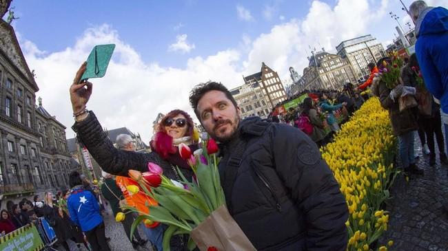 Negara ini setiap tahunnya memanen 1,7 dan 2 miliar tangkai Bunga Tulipdan mengekspornya ke lebih dari 100 negara di seluruh dunia. (AP Photo/Peter Dejong)
