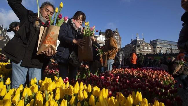 Ribuan orang berkumpul di Dam Square menikmati dan memetik 200 ribu tangkai Bunga Tulip yang disediakan secara cuma-cuma. (AP Photo/Peter Dejong)