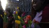 MeskiBelanda dikenal sebagai Negara Tulip, pengembangbiakkan bunga ini berawal dari Asia Tengah dan Asia Barat. (AP Photo/Peter Dejong)