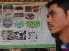 Keren! Pesantren ini Hasilkan Biogas dari Kotoran Ternak Sapi