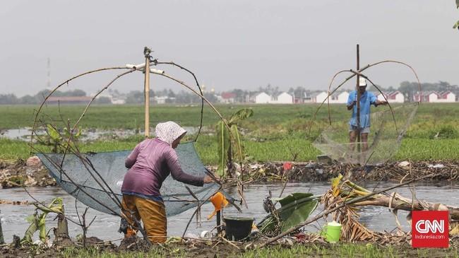 Pagi hari waktu yang pas menangkap ikan betik ketika air kali mengalir deras. CNNIndonesia/Safir Makki.