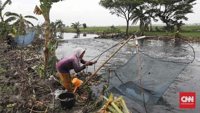 Kali Doser menjadi mata pencaharian warga saat air meluap di Desa Wates, Kecamatan Tambun, Kabupaten Bekasi, Jawa Barat, Selasa (21/1). CNNIndonesia/Safir Makki.