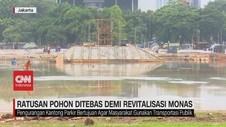 VIDEO: Ratusan Pohon Ditebas Demi Revitalisasi Monas