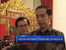 Antisipasi Virus Corona ke RI, Ini Langkah Jokowi