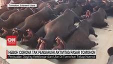 VIDEO: Heboh Corona Tak Pengaruhi Penjualan Daging Kelelawar