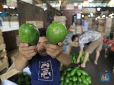 Virus Corona Ganggu Perdagangan, Eksportir Sampai Menangis