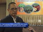 Komisi XI DPR Dukung  BPDPKS Dalam Peremajaan Lahan Sawit