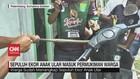 VIDEO: 10 Ekor Ular Masuk Permukiman Warga