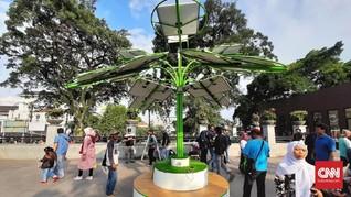 Pohon Bertenaga Matahari di Bandung, Bisa Buat Cas Ponsel