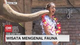 VIDEO: Wisata Mengenal Fauna di Bali