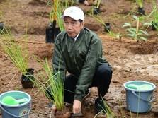 'Jokowi Gagal Capai Target Pertumbuhan Ekonomi Meroket 7%'