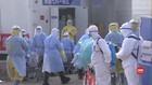 VIDEO: Korban Kematian Virus Corona Hampir Capai 500 Orang