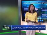 Jokowi Murka Kebakaran Hutan Masih Marak