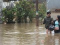 VIDEO: Banjir Rendam Beberapa Wilayah Jakarta