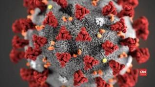Amerika Serikat Rilis Gambar Baru Virus Corona China Covid-19