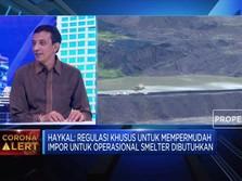 AP3I Usulkan Regulasi Substitusi Impor di Proyek Smelter