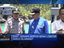 Jawaban Edhy Prabowo Soal Kontroversi Ekspor Benih Lobster