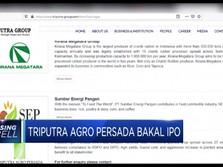 Triputra Agro Persada Bakal IPO