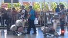VIDEO: Petugas Cek Kabar Penderita Covid-19 Pernah ke Bali
