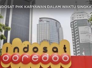 Diberi Waktu Cuma 4 Jam, Indosat PHK 667 Karyawan