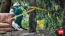 Pohon Terpapar Radioaktif Serpong Ditebang, Ternak Diteliti