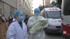 VIDEO: Bayi Penderita Covid-19, Tak Tertular Virus Corona