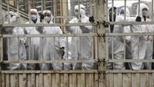 Jepang Liburkan Sekolah Gara-gara Virus Corona