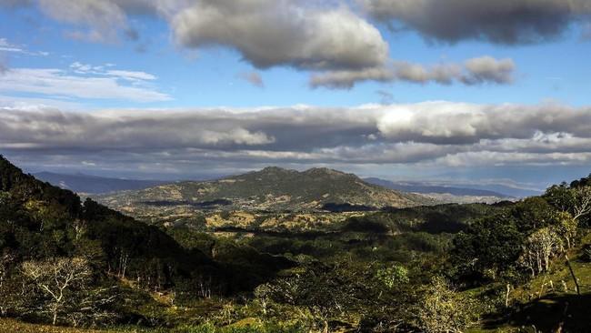 Alberto Gutierrez Giron telah hidup sendiri di pegunungan Nicaragua, Amerika Tengah, selama lebih dari 40 tahun dan menghasilkan mahakarya ukiran di bebatuan gunung. (Photo by INTI OCON / AFP)