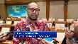 Cerita Putra Papua yang Ditunjuk Erick Jadi Direksi Freeport