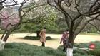 VIDEO: Wisata di Tiongkok Timur Mulai Menerima Pengunjung