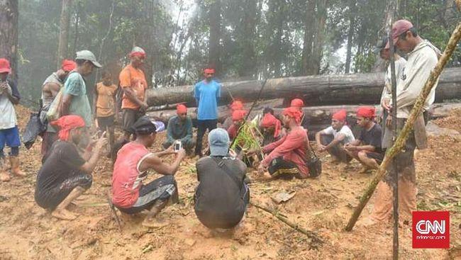 26 Warga Adat Maluku Ditangkap Karena Protes Pembalakan Hutan