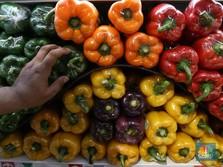 Ampas Makanan Sampai Sayur Impor Banjiri RI di April