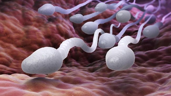 4 Warna Sperma Ungkap Kondisi Kesehatan Tubuh