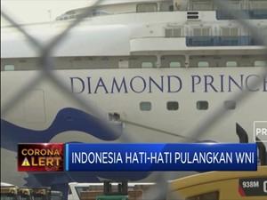 Pemerintah Hati-Hati Pulangkan WNI Kapal Diamond Princess