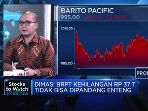 Kehilangan Market Cap Rp 37 T, Begini Analisis Kinerja BRPT