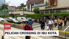 VIDEO: Efektivitas Pelican Crossing