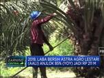 Laba Bersih Astra Agro Lestari Anjlok 85% pada 2019