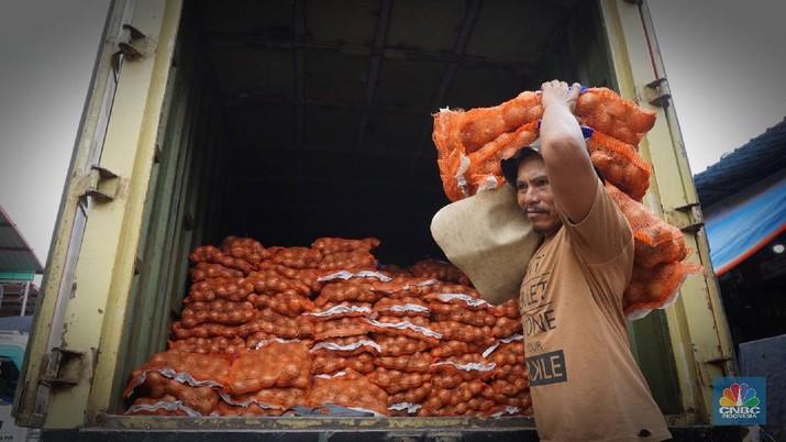 Kebutuhan bawang impor bombay 300 ribu ton, izin impor baru keluar 2.000 ton.