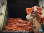 Harga Bawang Bombay Meroket: Izin Impor Baru 2.000 Ton