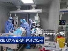 Ditengah Mewabahnya Corona, 48 Ribu Orang Dinyatakan Sembuh
